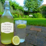 Elderflower Recipes : Vodka &#038; Cordial