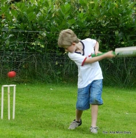 Cricket in the garden