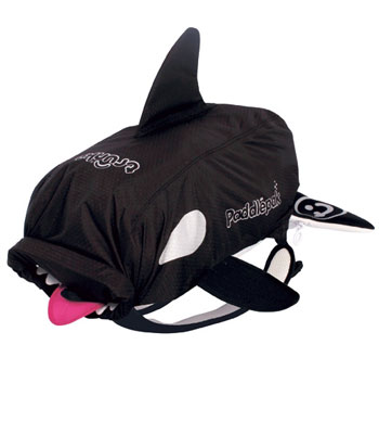 paddlepac killer whale