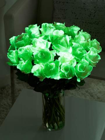 Inteflora, glow in the dark roses