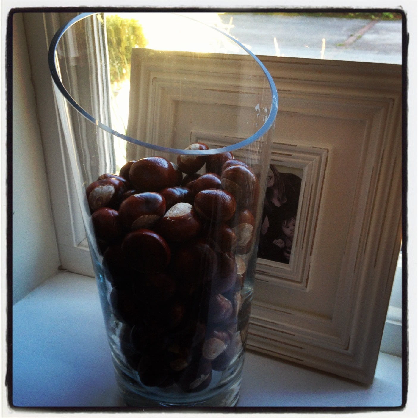 conkers in vase