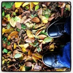 leaves under foot